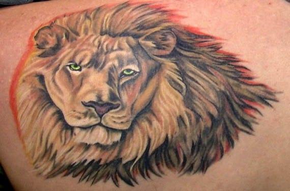 El león irradia fuerza y poder