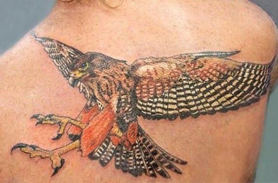 Un colorido halcón del tatuador Rob Suisted