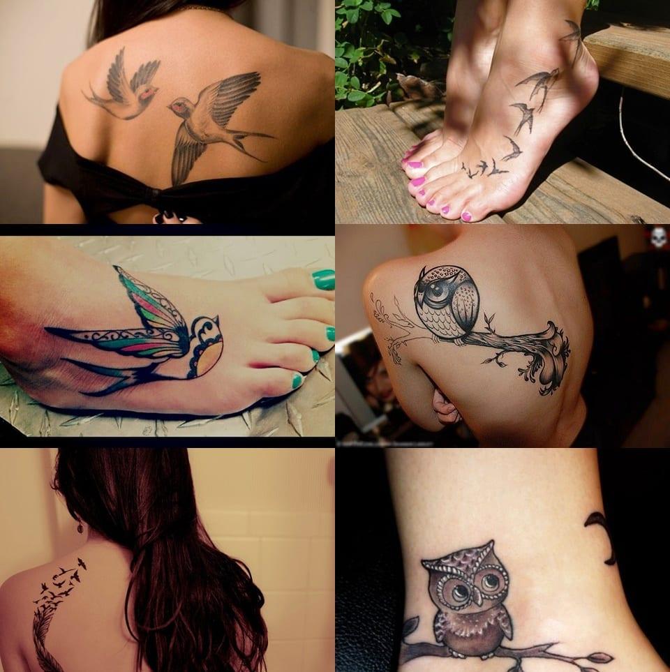 tatuajes pajaros varios