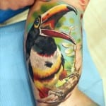 Tatuajes de tucanes
