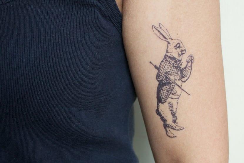 alice conejo