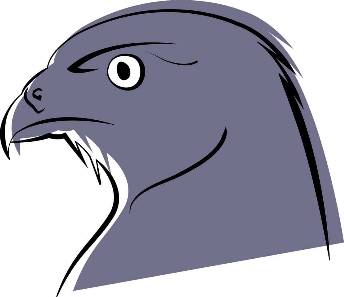 El halcón tiene vista de lince