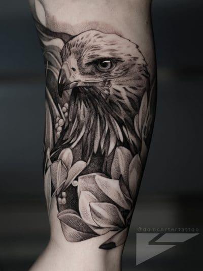 la expresión del halcón es fundamental para expresar su simbolismo
