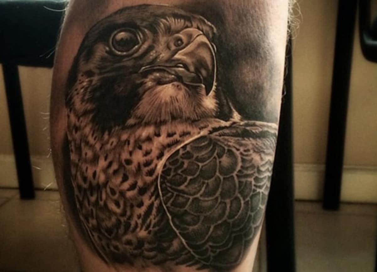Un tatuaje de halcón realista es genial como simbolismo