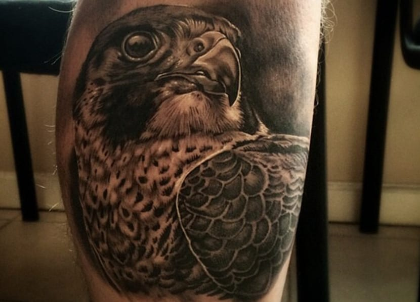 Tatuajes de halcones