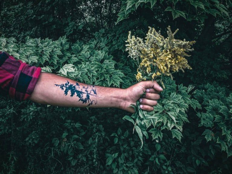 Tatuaje de helecho realista