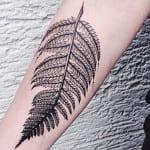 Tatuajes de helechos