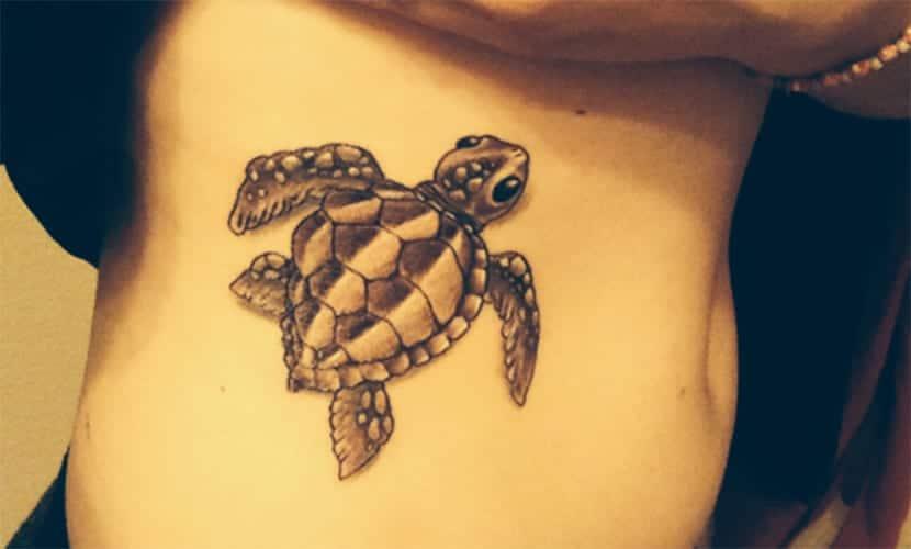 Tatuajes De Tortugas Marinas Y Su Significado