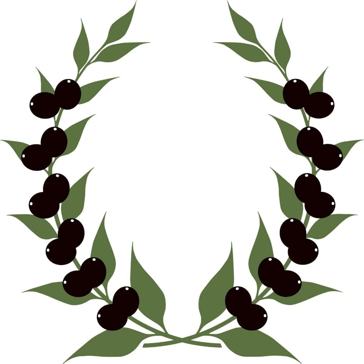 Corona de ramas de olivo con olivas negras