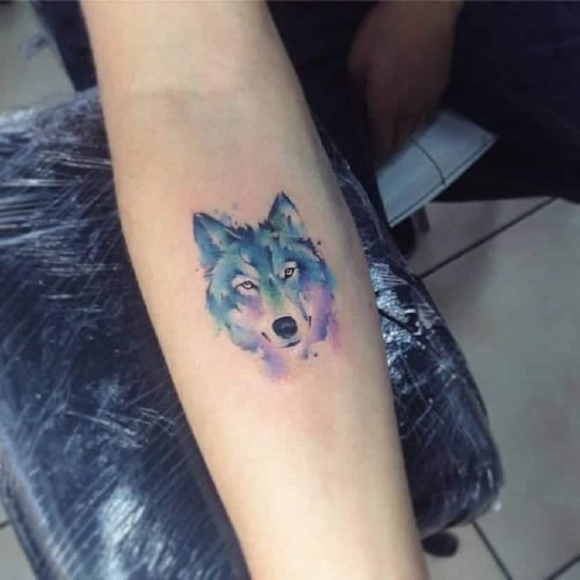 Tatuaje de lobo acuarela