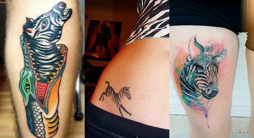 Qué Significan Los Tatuajes De Cebras