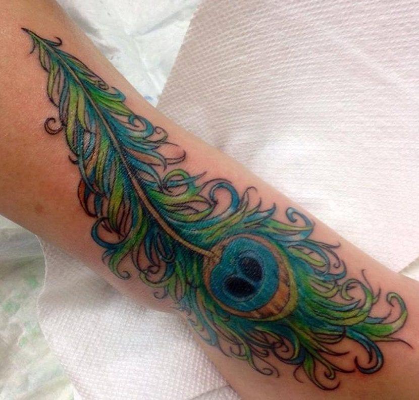 tatuajes de plumas de pavo real