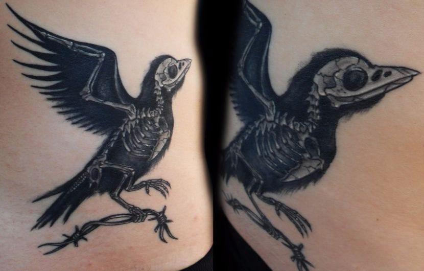 cuervo-esqueleto
