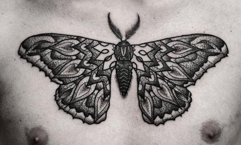 Tatuajes De Polillas Y Su Significado Alma Y Espiritu