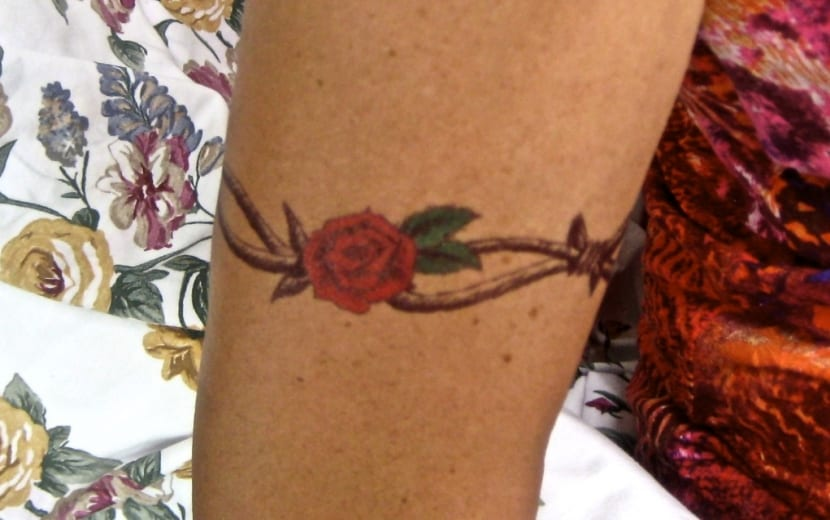 Rosa espino