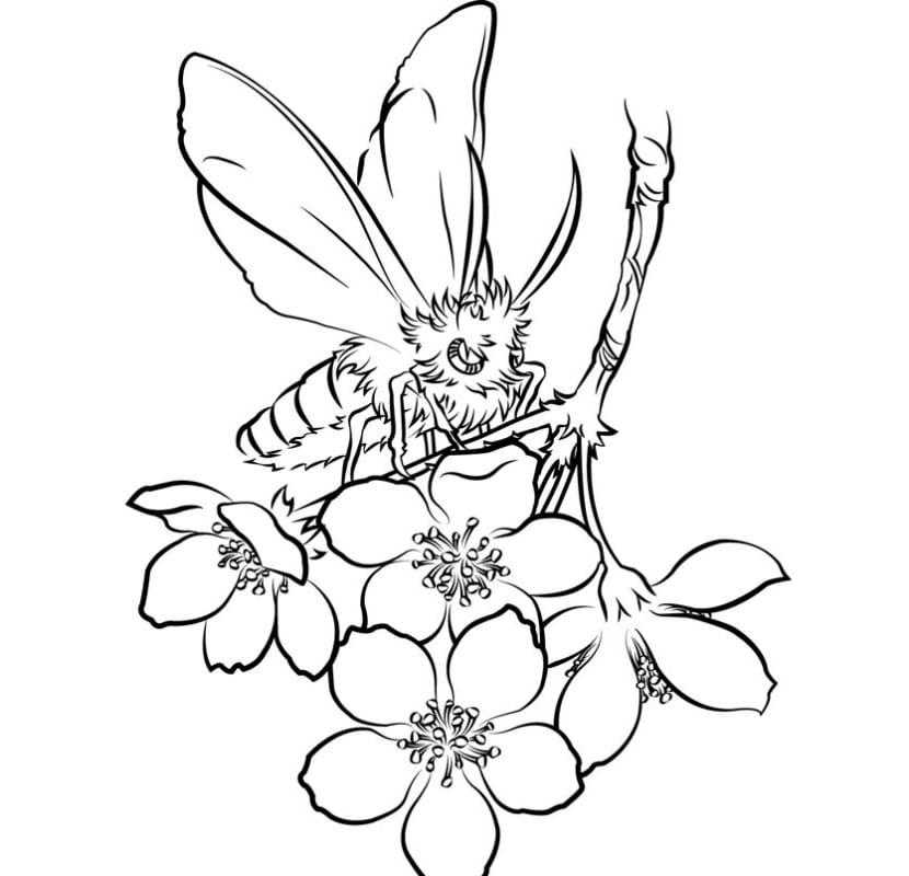 Flor De Cerezo Dibujo Tatuaje