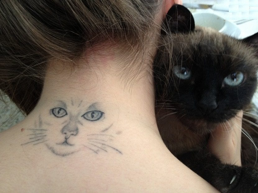 Tatuajes De Ojos De Gato