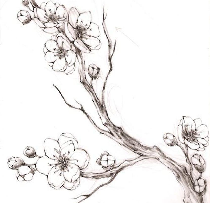 Flor De Cerezo Tatuajes En Forma De Dibujos Muy Sencillos