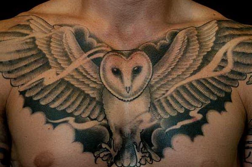 Tatuaje búho en pecho