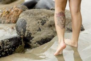 Tatuaje de león con flores