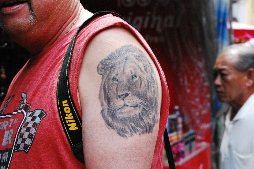 Tatuaje de león en el brazo.