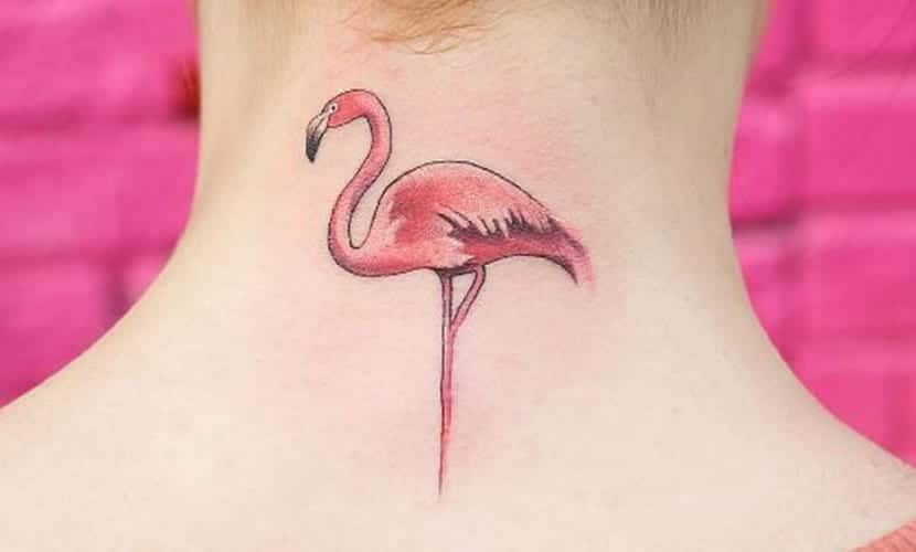 Tatuajes de flamencos