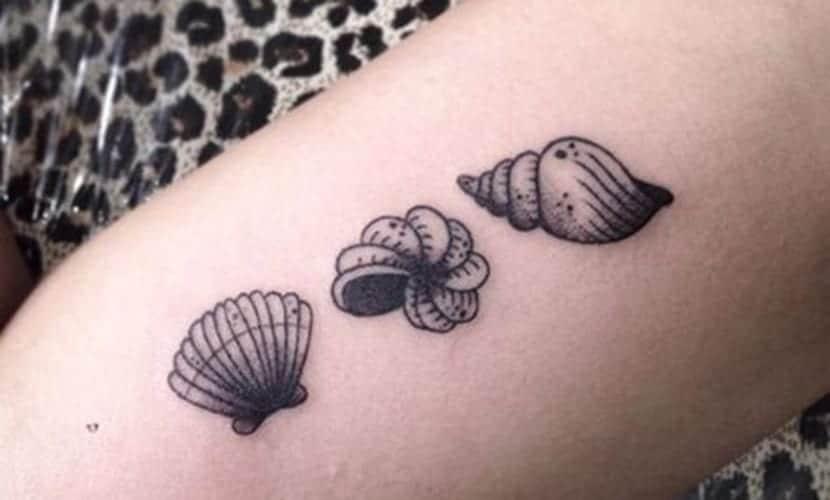 Tatuajes De Caracoles Marinos Significado Y Disenos