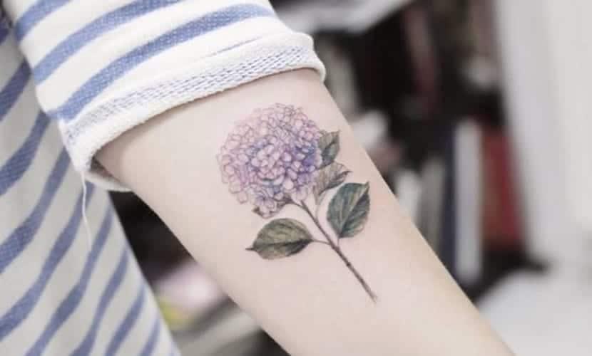 Tatuajes de hortensias