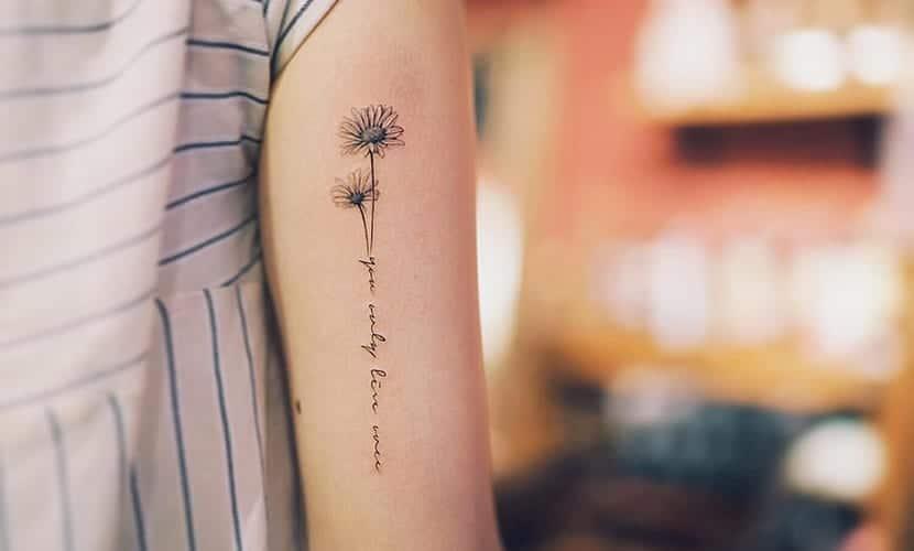 Tatuajes de manzanilla