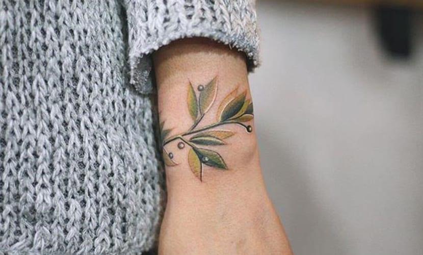 Tatuajes de ramas de olivo en el brazo