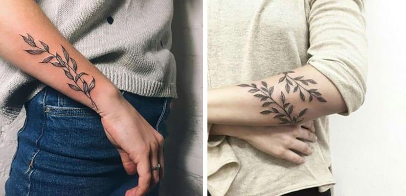 Tatuajes de ramas de olivo