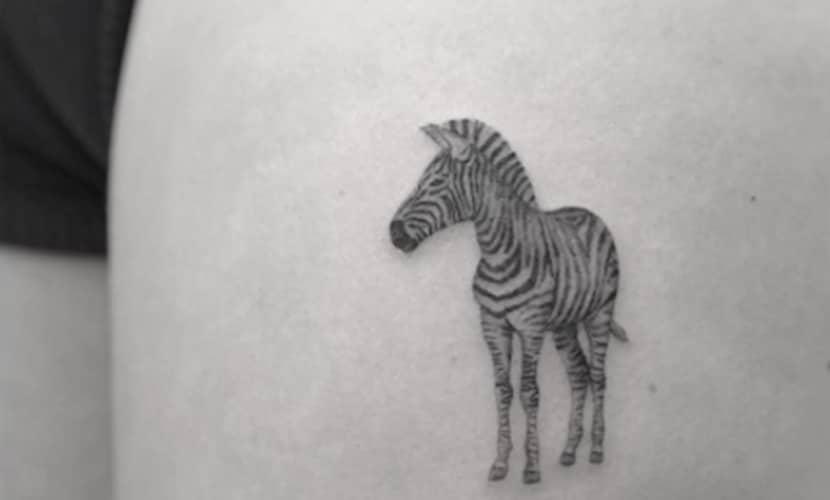 Tatuajes de cebras