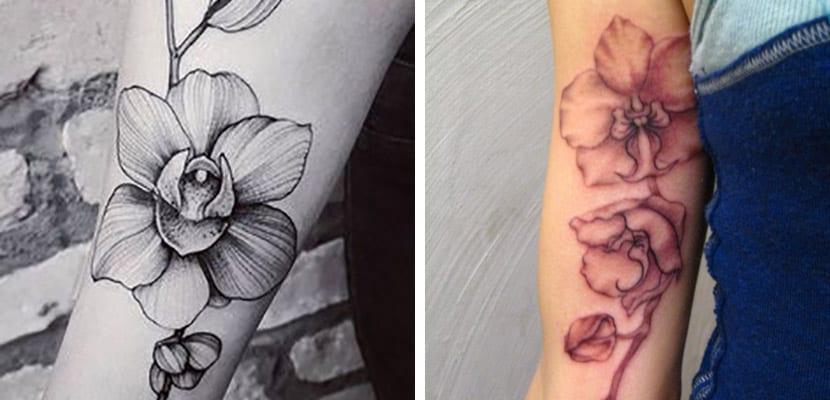 Orquídeas en el brazo
