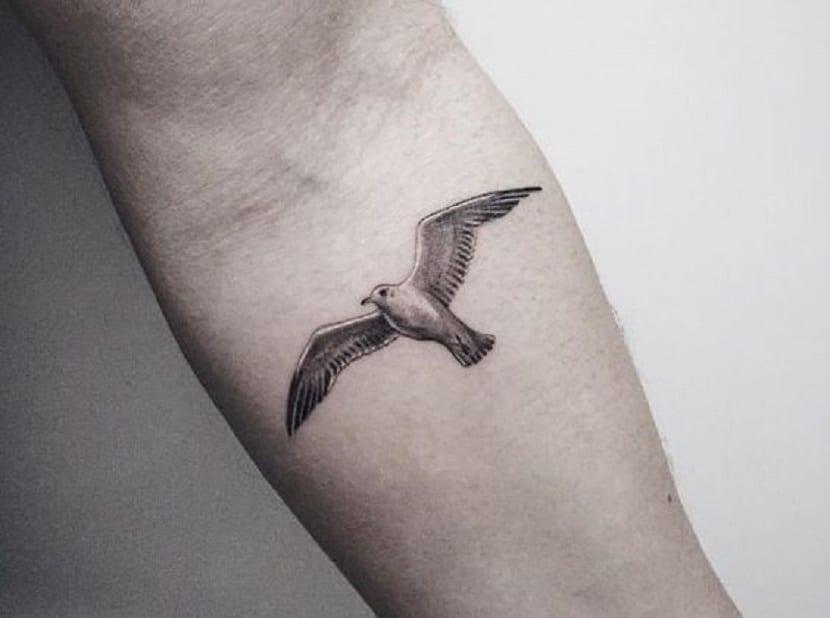 gaviota tatuada simbolismo