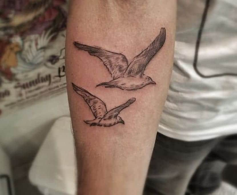 Significado del tatuaje de gaviota
