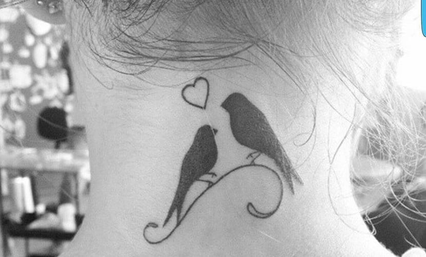 Tatuajes de pájaros en el cuello