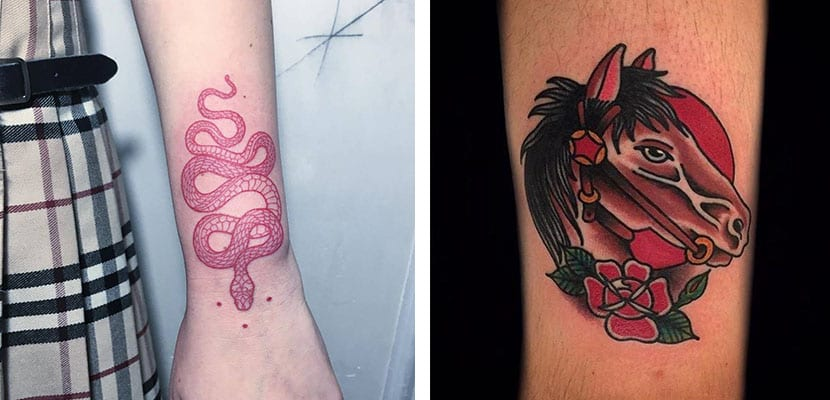 Tatuajes rojos de animales