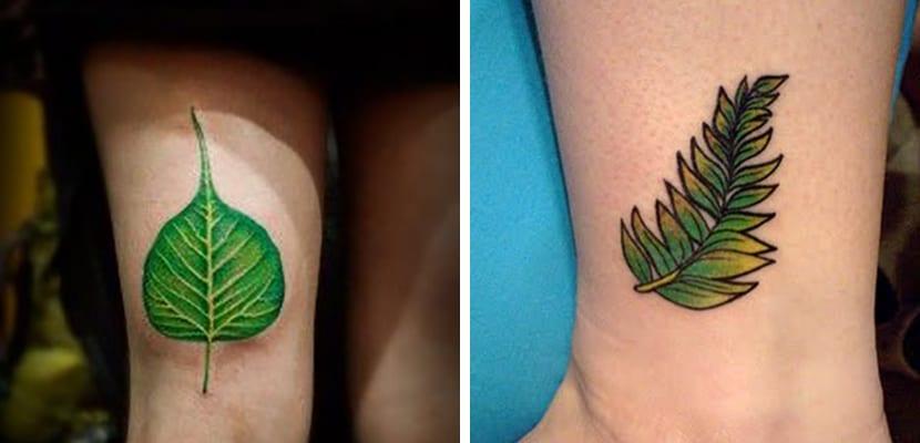 Tatuajes de hojas
