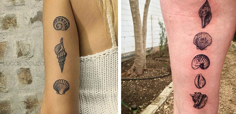 Tatuajes de conchas