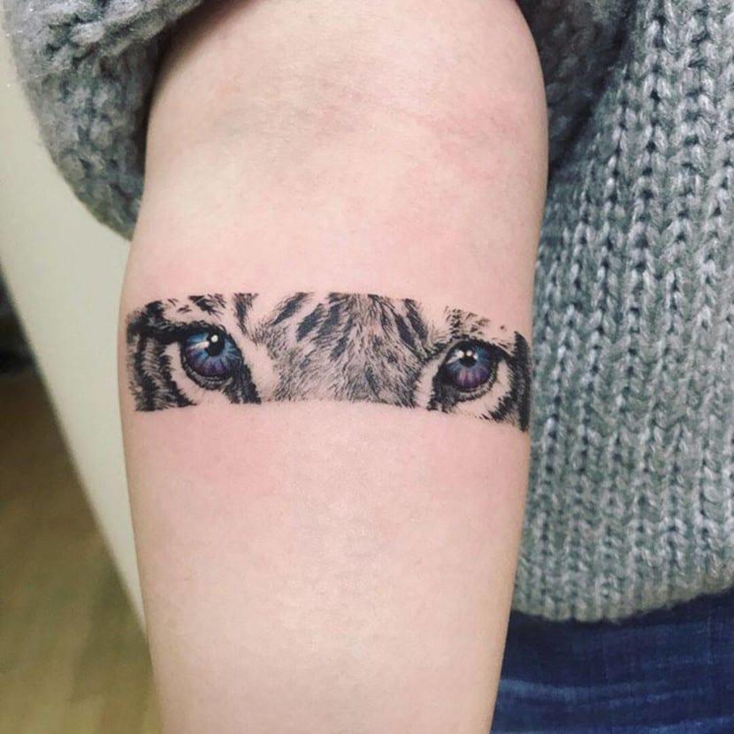 Tatuajes de ojos de animales