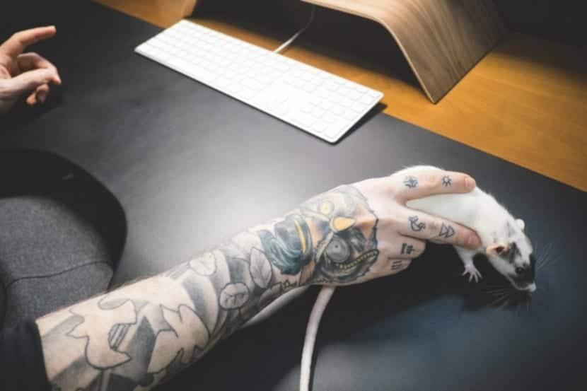Tatuajes en el Dorso