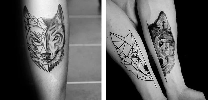 Lobos geométricos