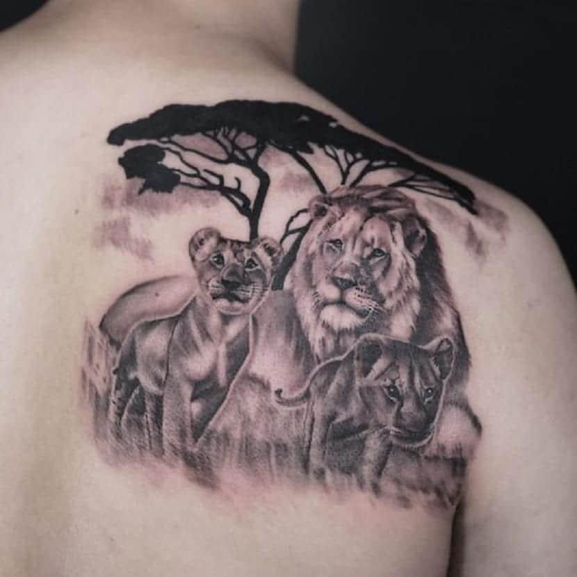 tatuajes leones con cachorros