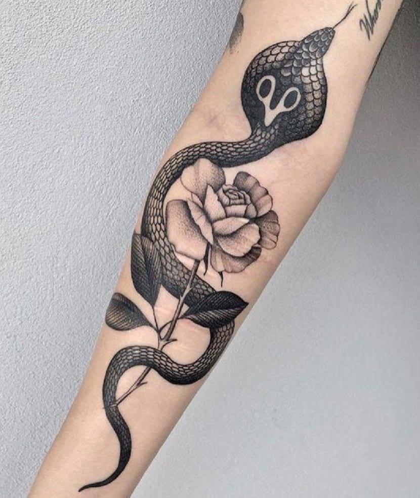 Cobra con rosa