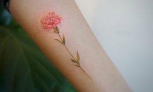 Tatuajes de claveles