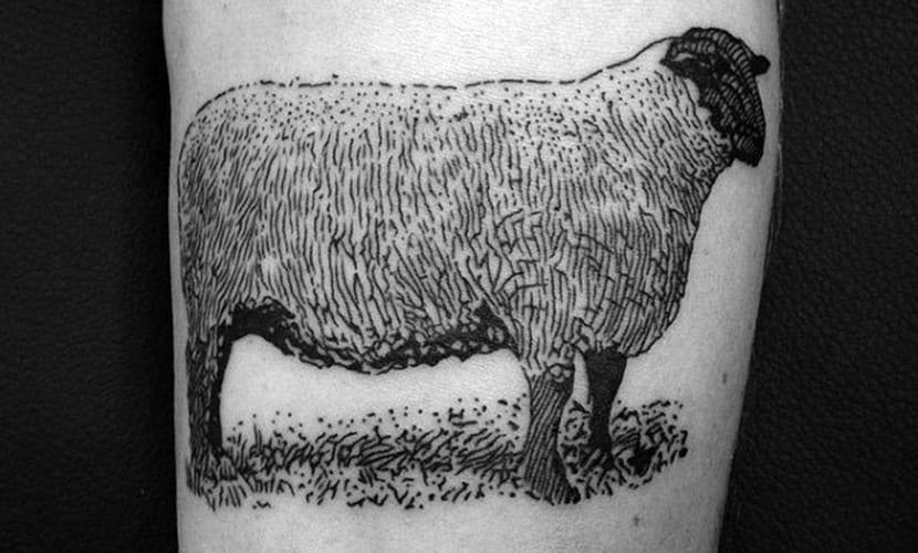 Tatuajes de ovejas