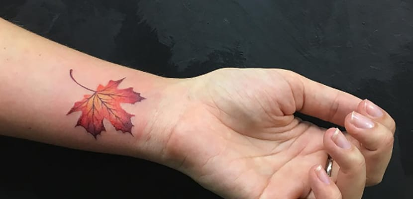 Tatuaje de hojas