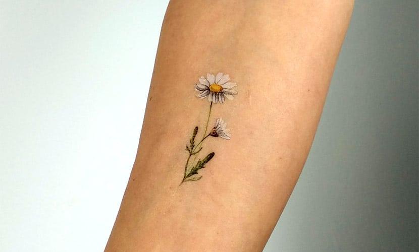 Tatuajes pequeños de margaritas