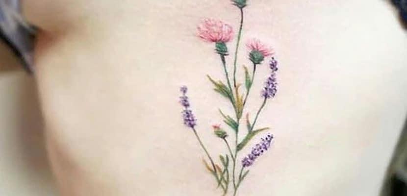 Flores con lavanda