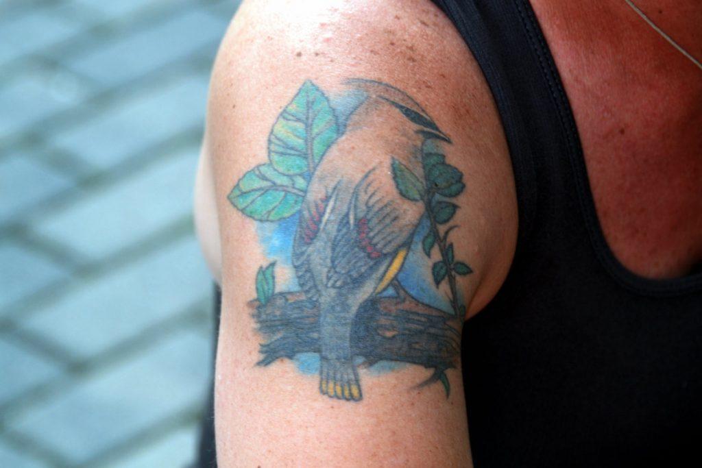 Tatuajes con Animales Pájaro